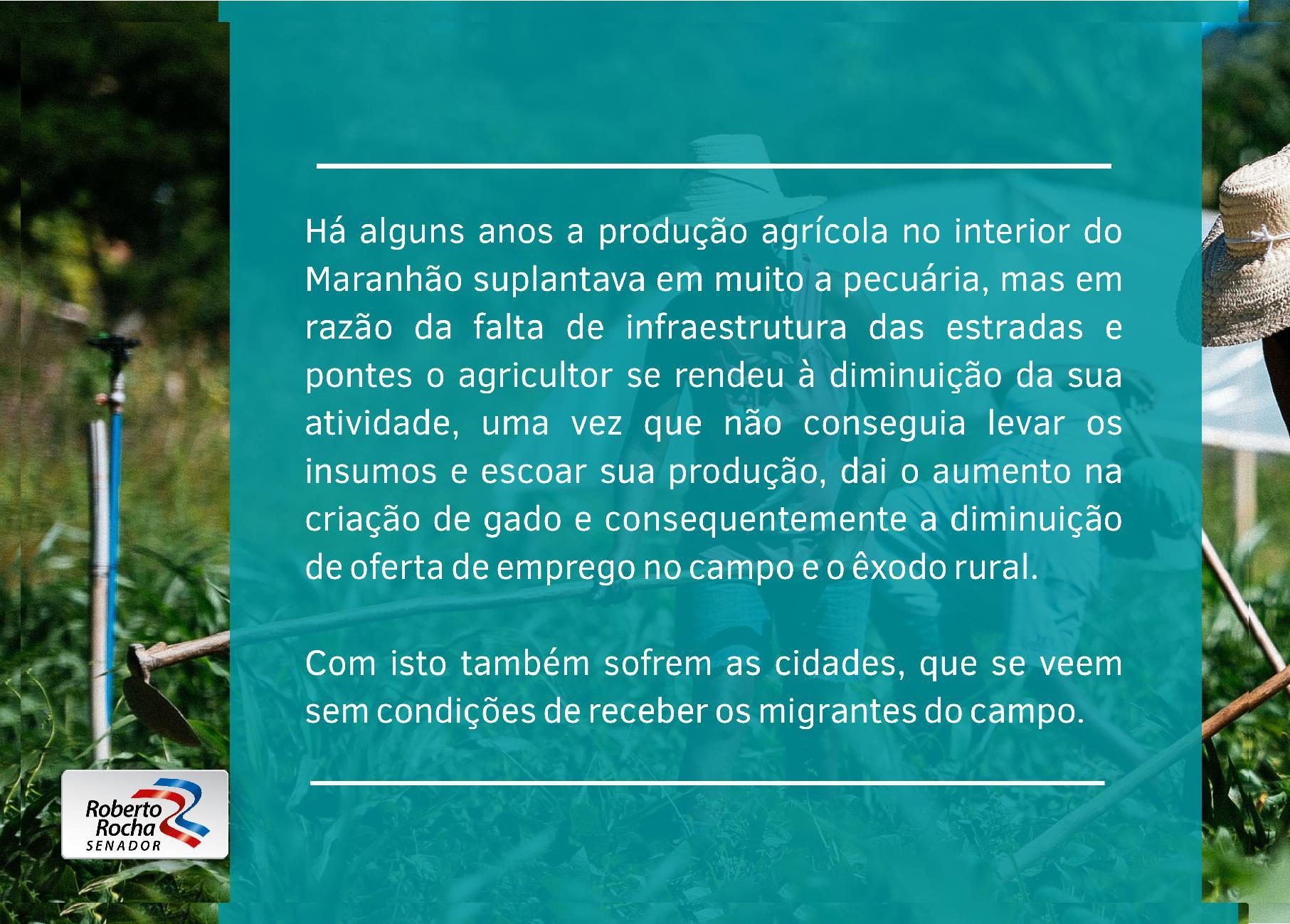 PONTE PARA O PROGRESSO_V232